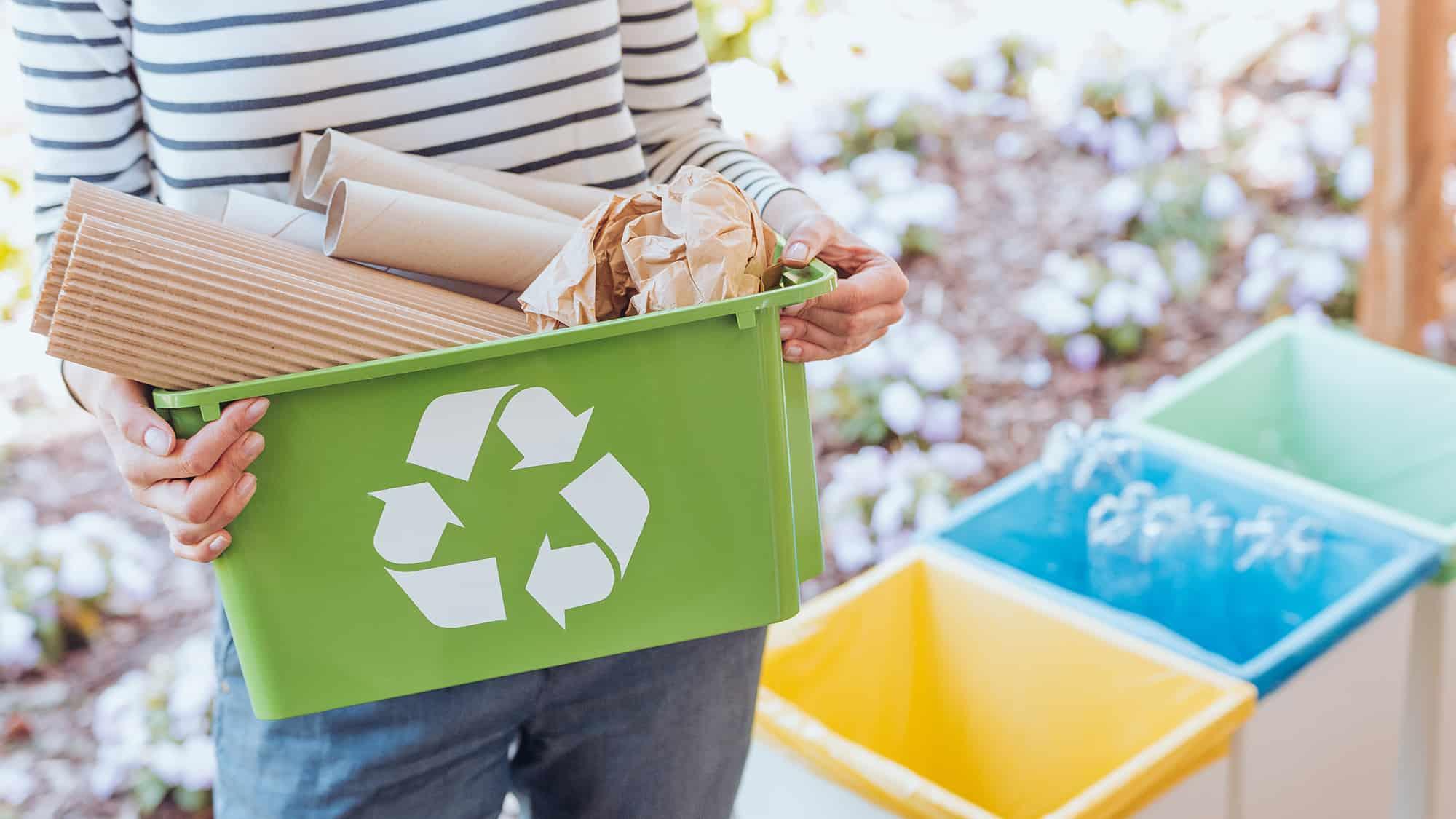Activist sorting paper waste