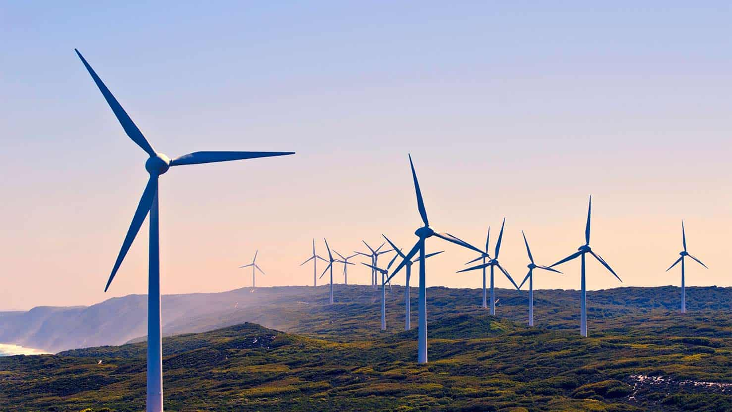 Windfarm on isolated field