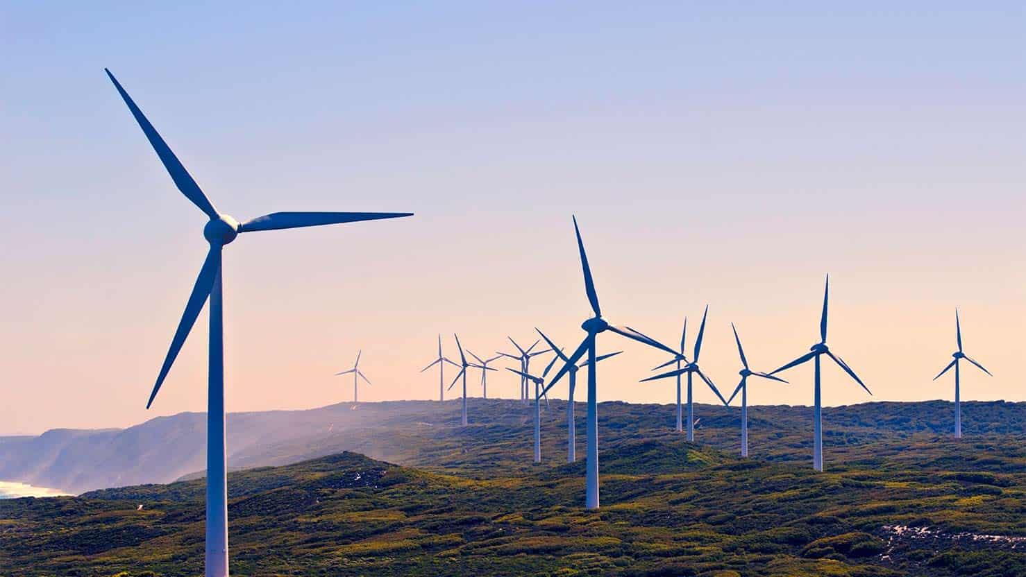 Windfarm on isolated field
