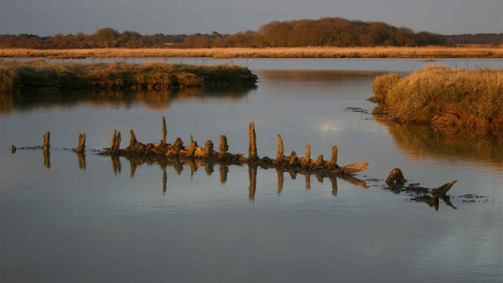 Snape Marshes Nature Reserve, Suffolk