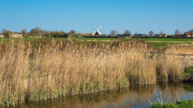 Windmill in a marshy field